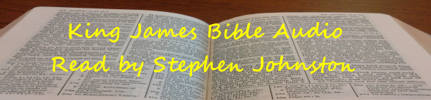 audio bible banner